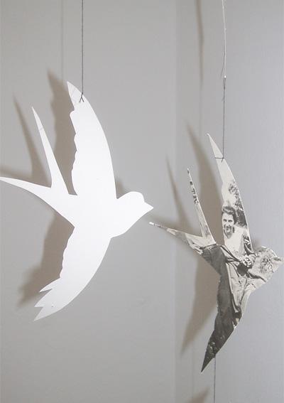 birdsweb2